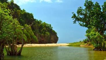 Pantai kunir bukit Pacitan