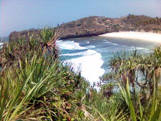 Srau area surfing - pantai pacitan