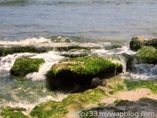 Karang dasar pantai pidakan jetak tulakan pacitan