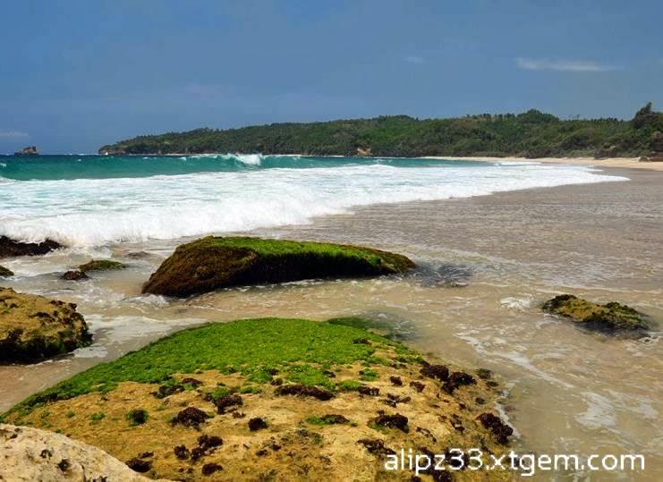 Pantai kunir karang pacitan