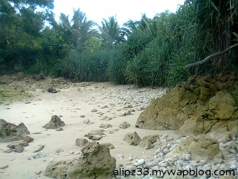 Pasir putih sebelah barat pantai wawaran ngobyok sumberejo sudimoro pacitan