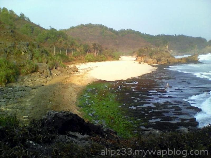dari atas tebing barat pantai denombo jlubang pringkuku wisata pacitan