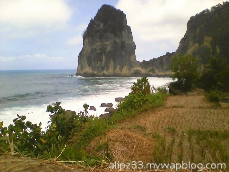 Dari sawah - Pantai wisata Pangasan Kalipelus Pacitan