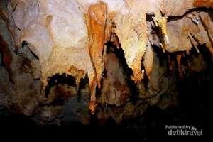 stalaktit hidup Wisata goa peden pringkuku pacitan