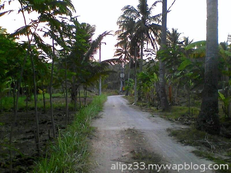 Jalan rabat dekat pantai - wisata pantai sruni jlubang pringkuku pacitan