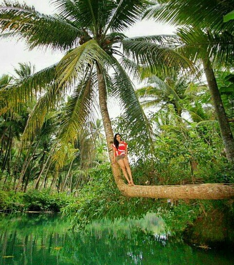 gambar foto memanjat kelapa selfie sungai kali maron pacitan jawa timur